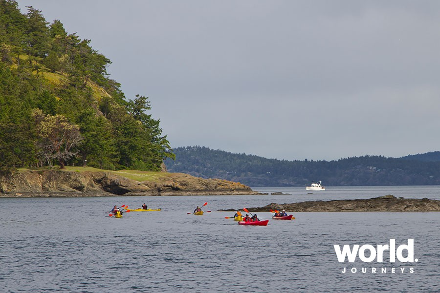 Explore Olympic Wilderness & San Juan Islands