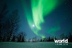 Quest for the Northern Lights