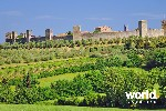 Tuscan Cuisine & Culture in Luxury
