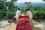 Wellness in India (North)