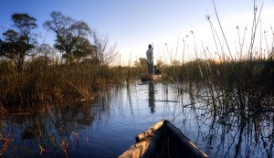 Mokoro in the Okavango Delta, Botswana