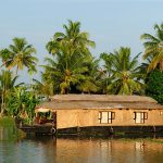 South India, Culinary Journey