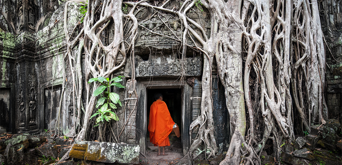 Ta Prom Khmer ancient Buddhist temple in jungle forest